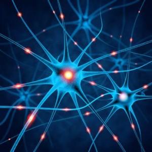 Neuronale Zellen MS